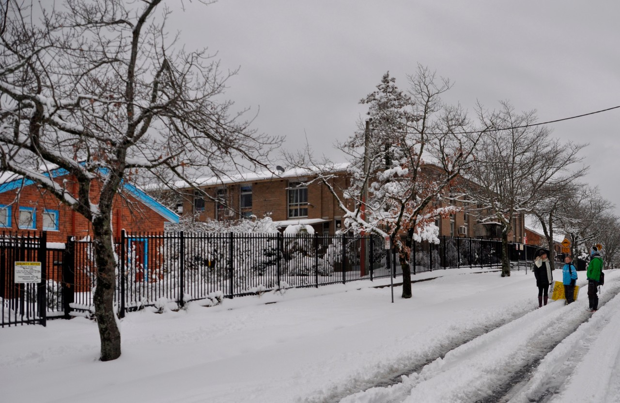 Blackheath Public School in snow